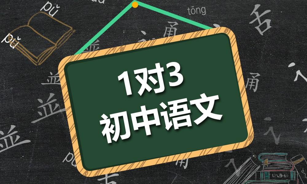 精锐初中语文一对三课程