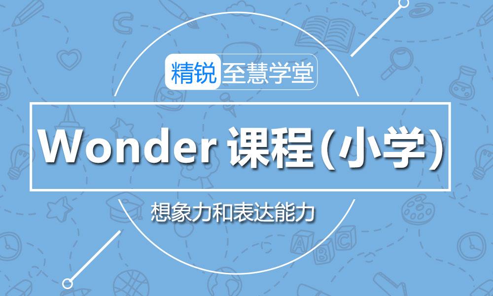 Wonder 课程(幼小)