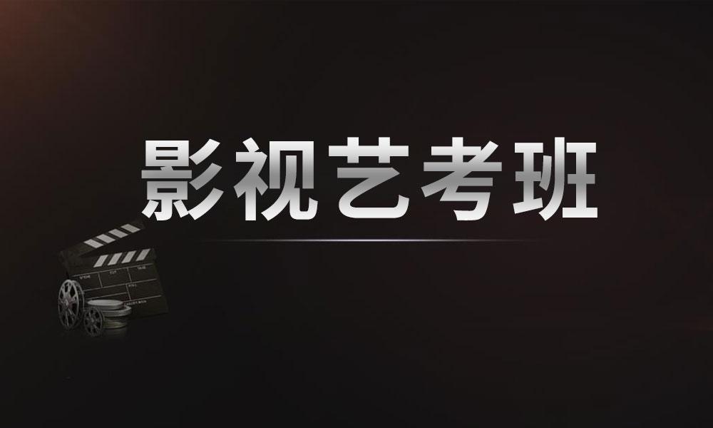 2019影视艺考精品定向课程