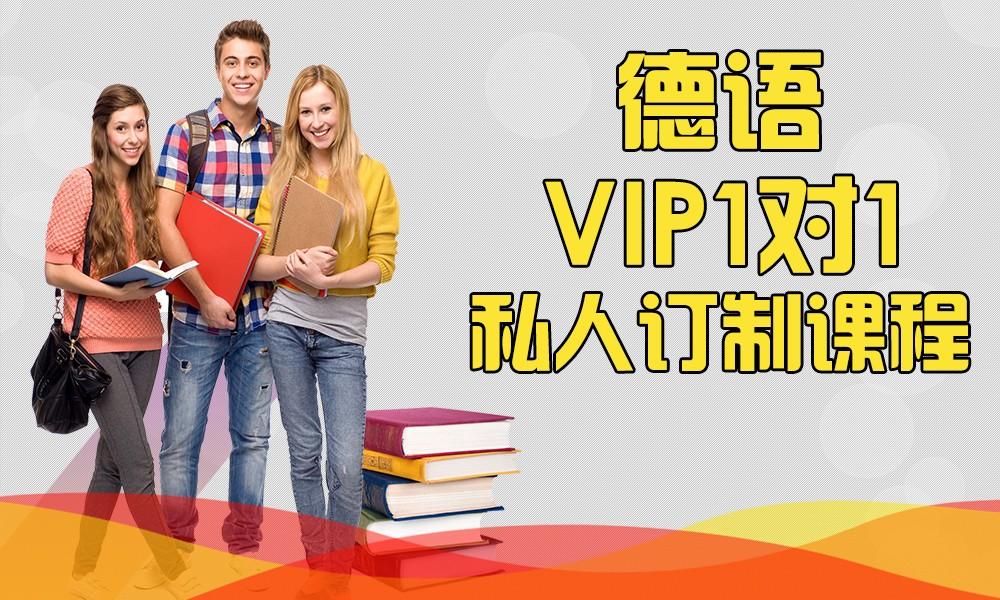 德语VIP1对1私人订制课程