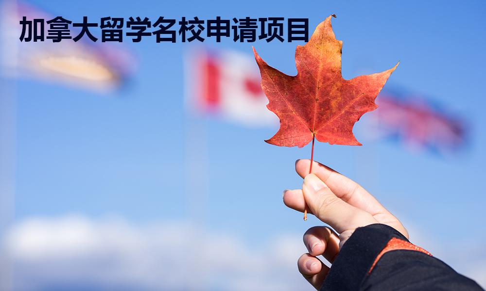 加拿大留学名校申请项目