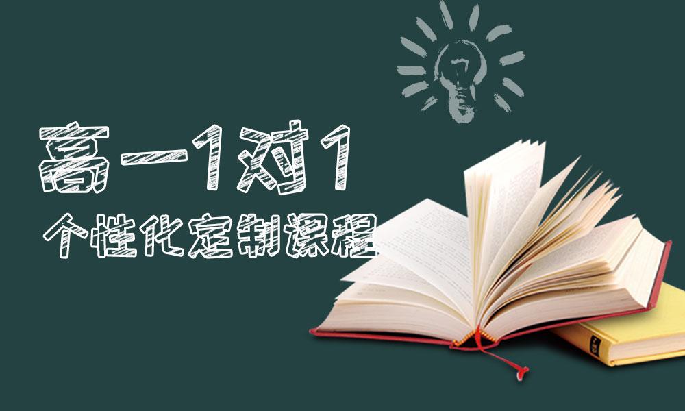 高一1对1个性化定制课程