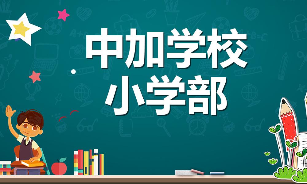 北京中加学校-小学部