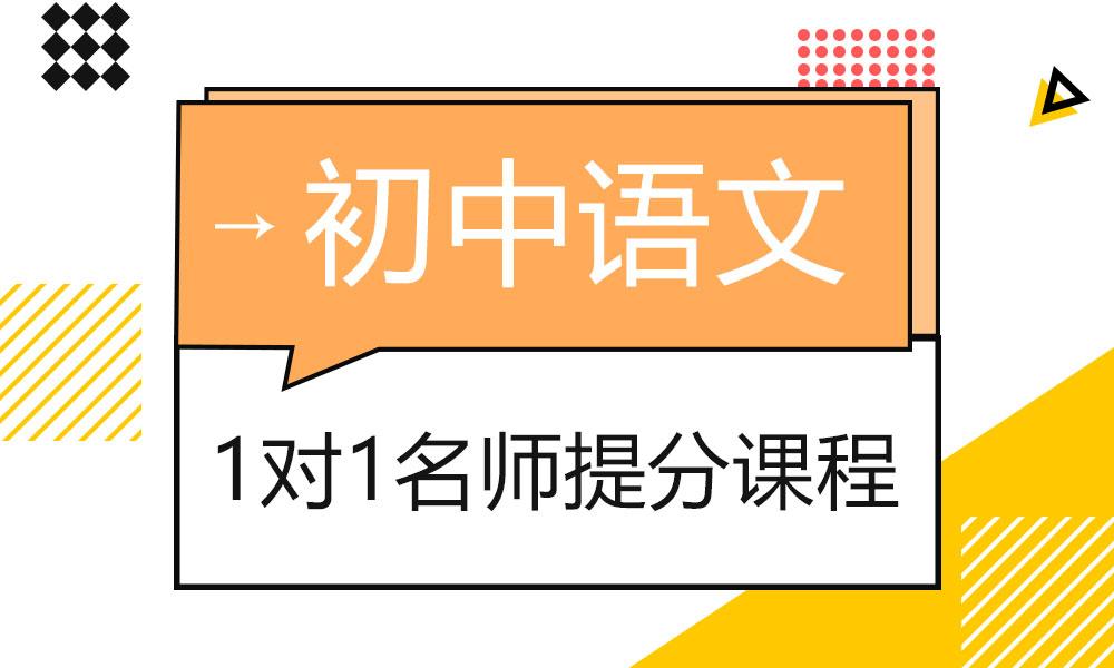 初中语文1对1VIP课程