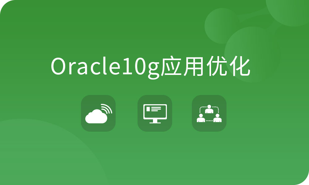 Oracle10g应用优化