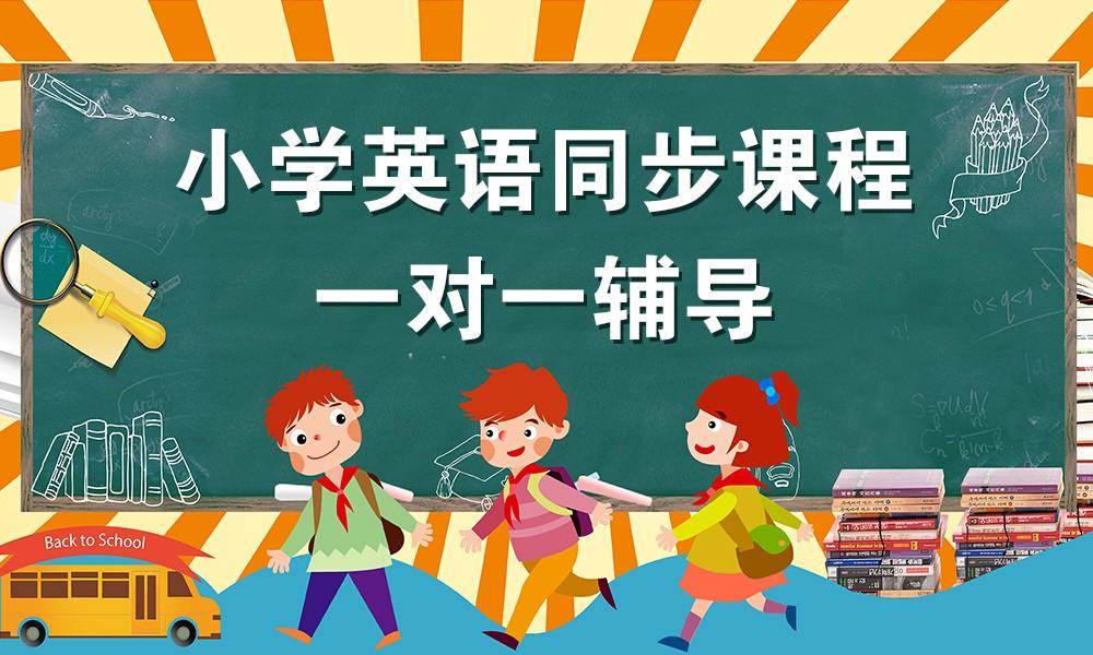 小学英语同步一对一课程