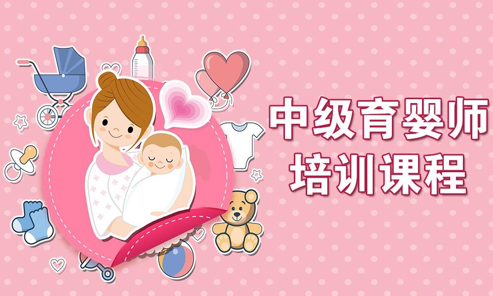 中级育婴师培训课程