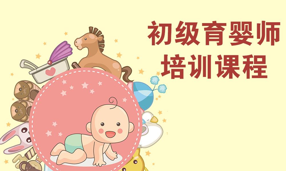 初级育婴师培训课程