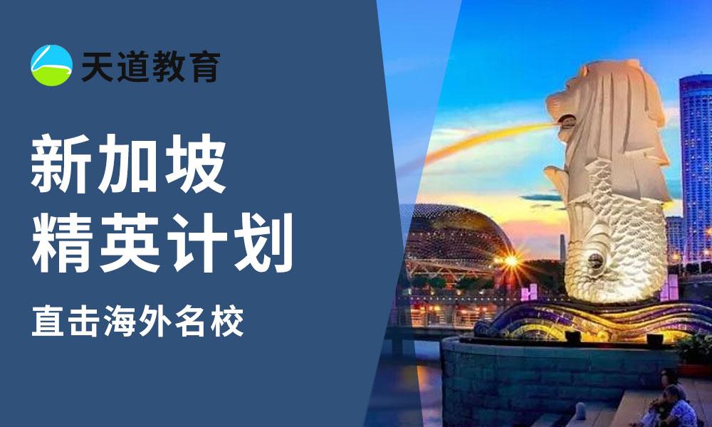 新加坡学习精英计划