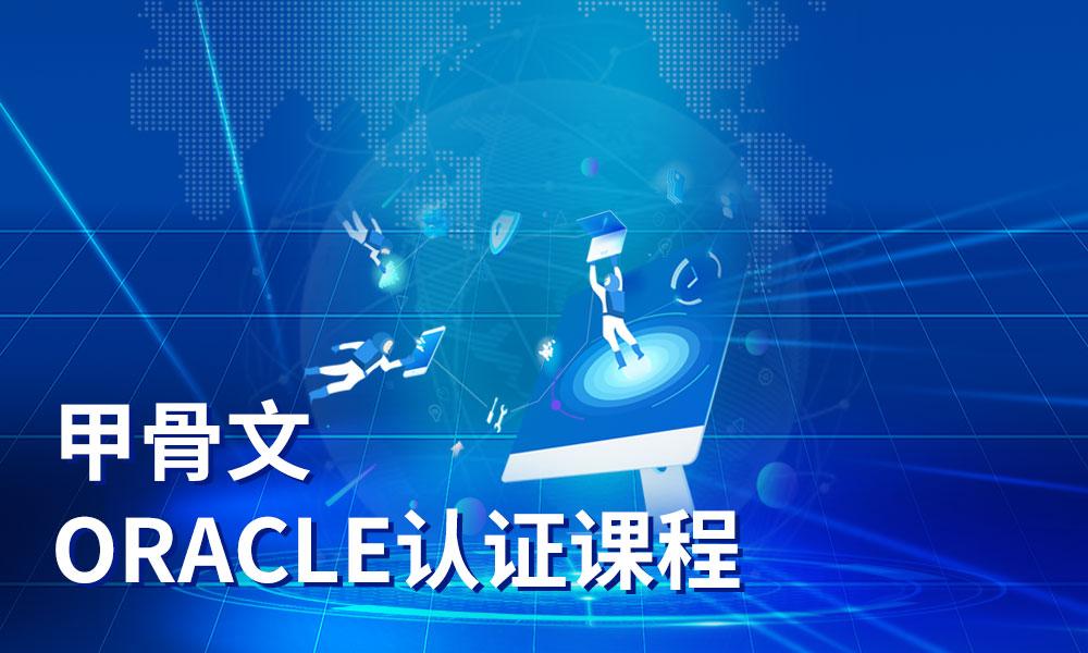 甲骨文(Oracle)认证课程