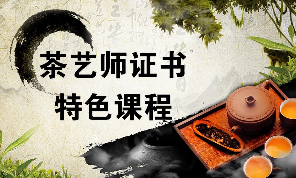 茶艺师证书特色课程