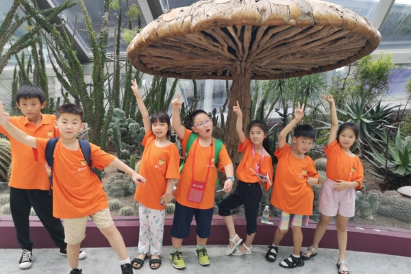 新加坡科技文化体验营