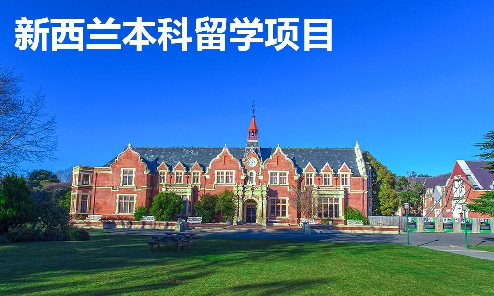 新西兰本科留学项目