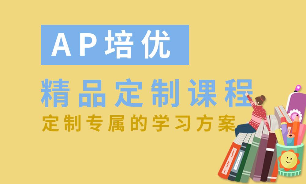 AP培优精品定制课程