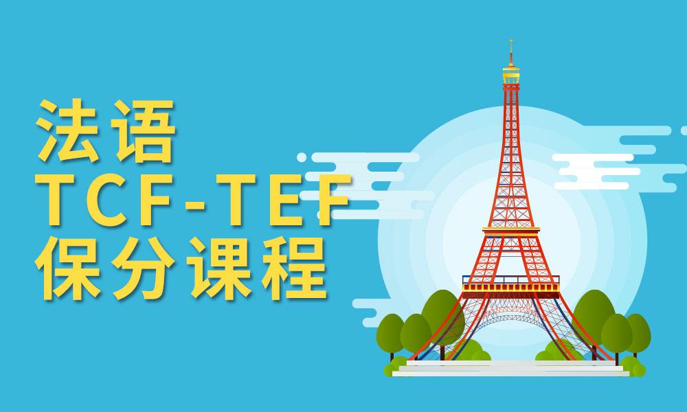 法语TCF-TEF保分课程