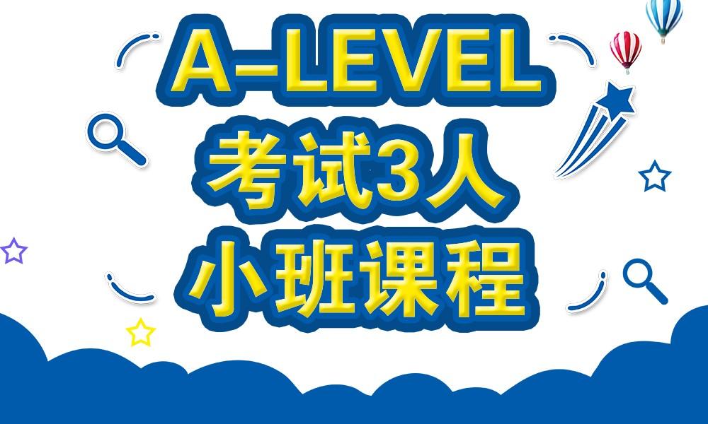 A-level考试3人小班课程