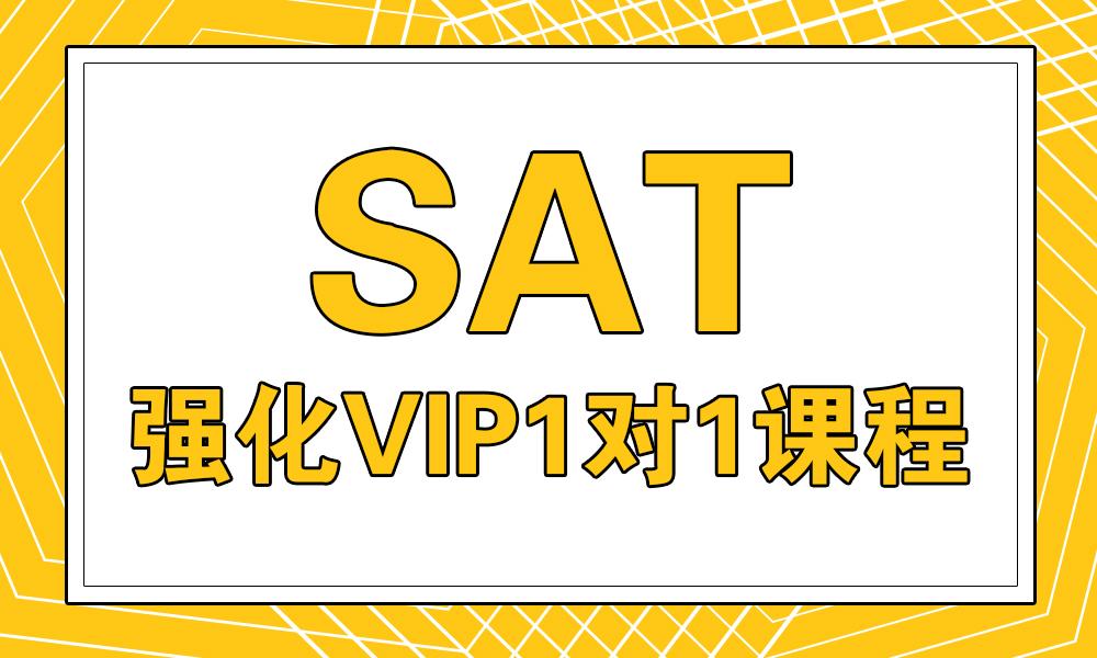 SAT强化VIP1对1课程