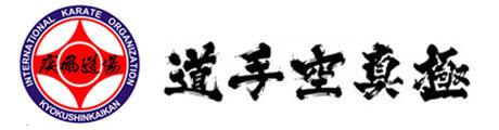 上海疾风空手道馆Logo
