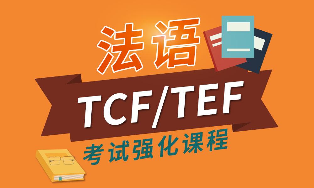 法语TCF/TEF考试强化课程