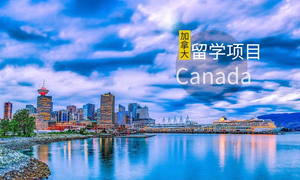 加拿大留学项目