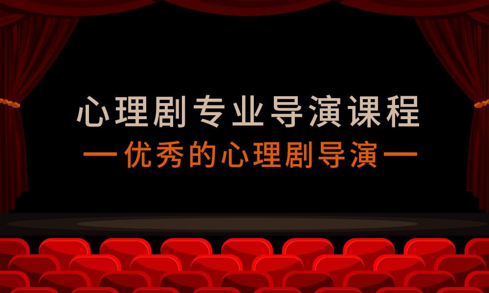 上海德瑞姆心理剧专业导演课程