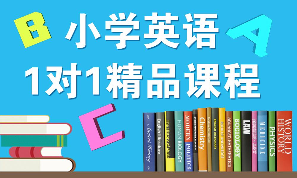 杭州秦学小学英语辅导课