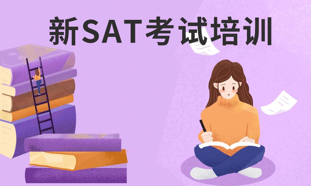 杭州啄木鸟新SAT考试培训