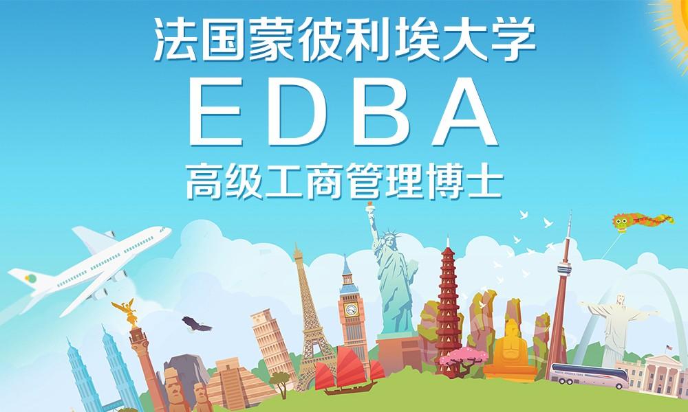 蒙彼利埃大学EDBA项目