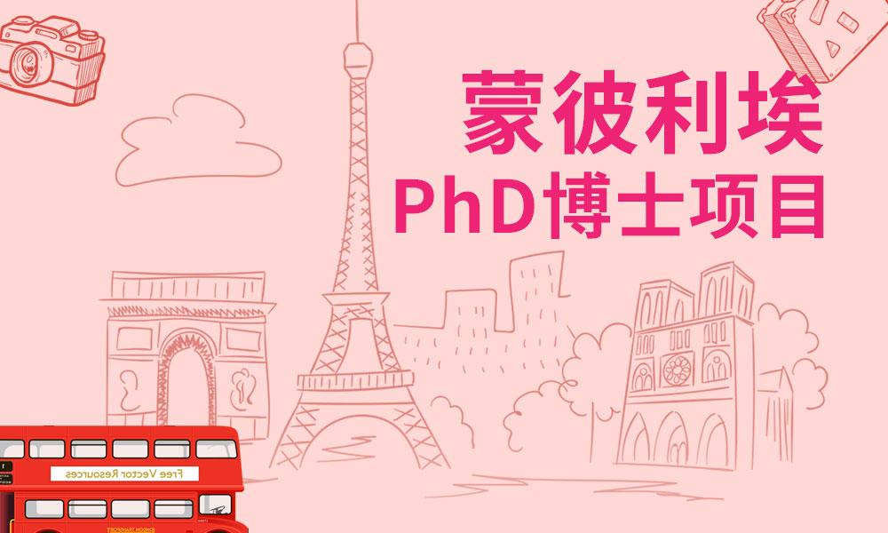 蒙彼利埃PhD博士项目