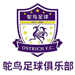 杭州鸵鸟足球俱乐部