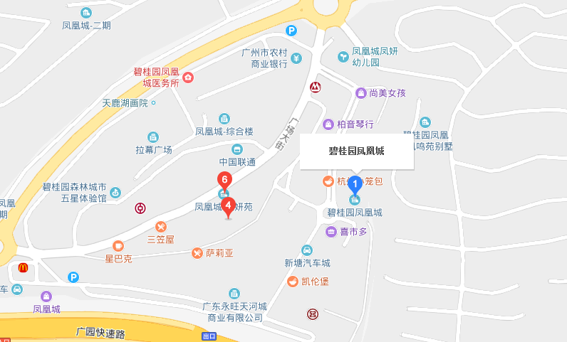 广州金宝贝增城凤凰城中心