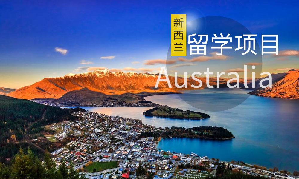 深圳启德新西兰留学项目