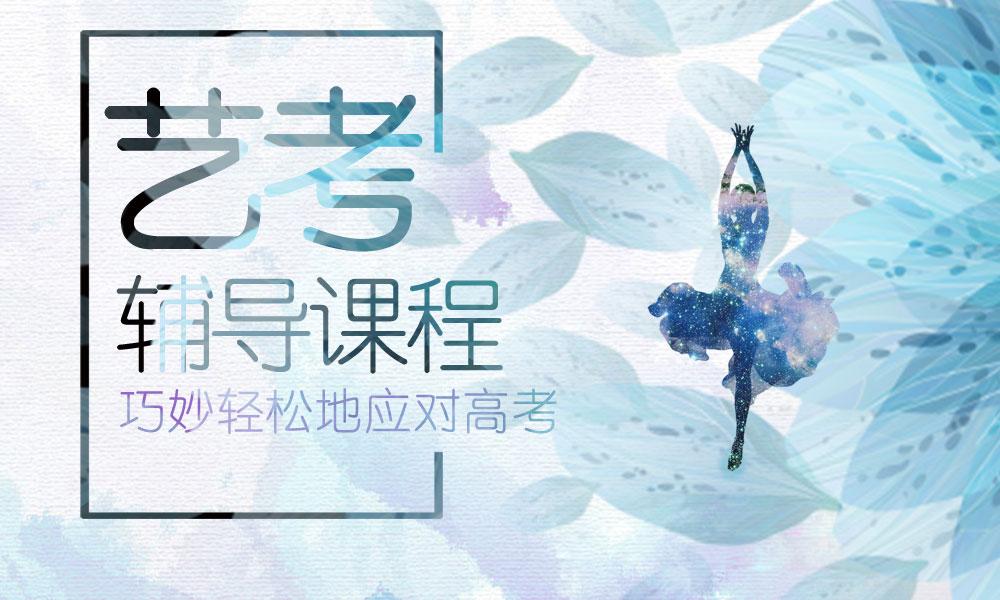 深圳龙文艺考辅导课程
