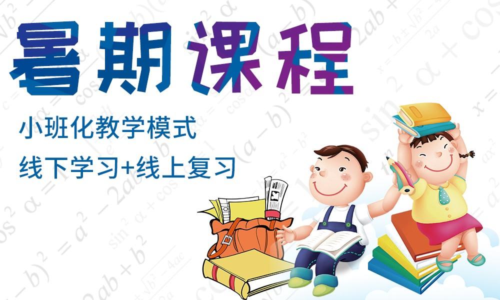 深圳韦博开心豆暑期课程
