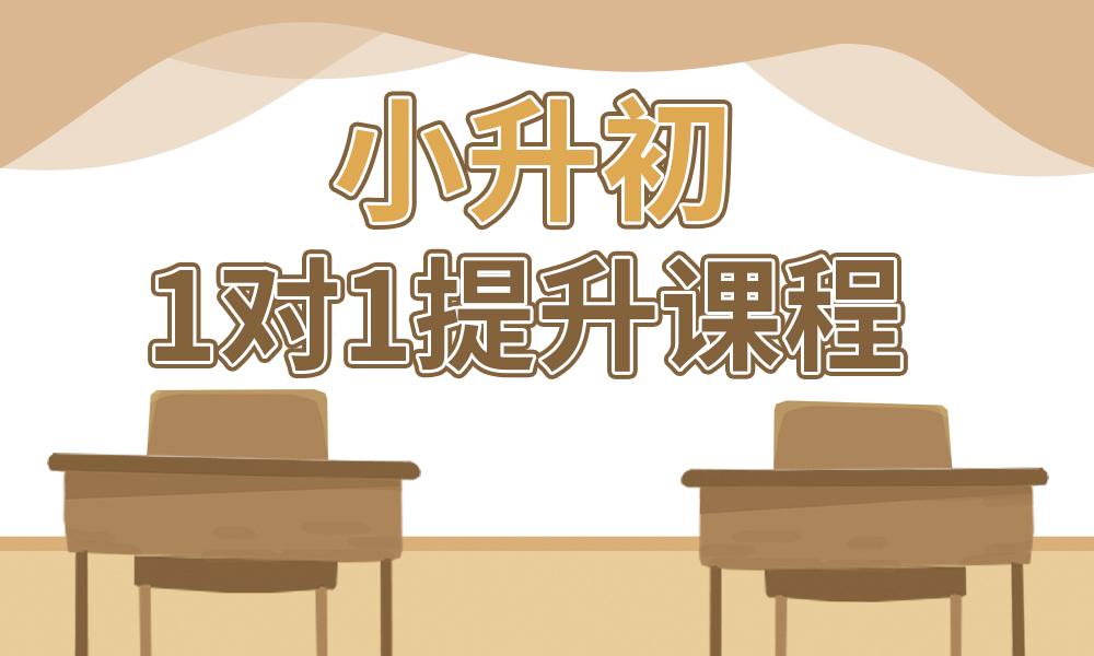 深圳星火小升初1对1提升课程