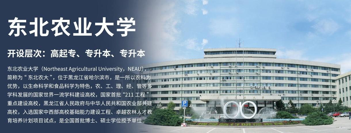 东北农业大学网络学院(深圳中心)