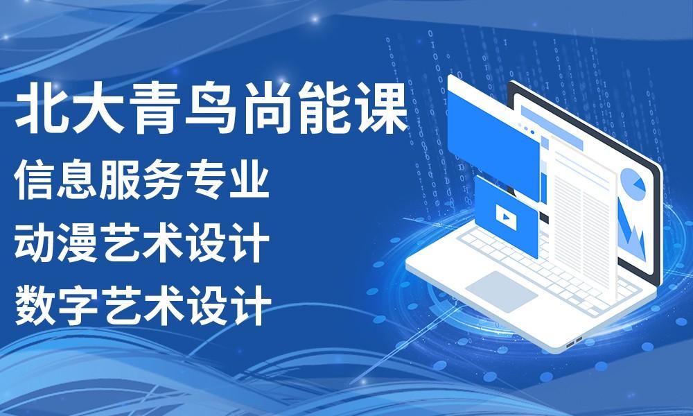深圳北大青鸟尚能课