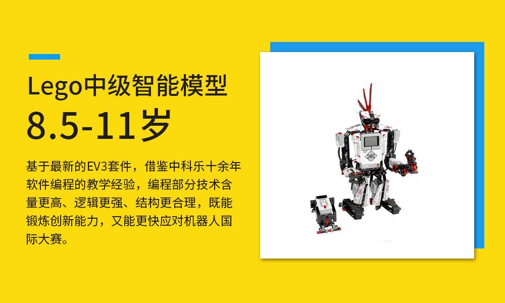 深圳中科乐Lego中级智能模型