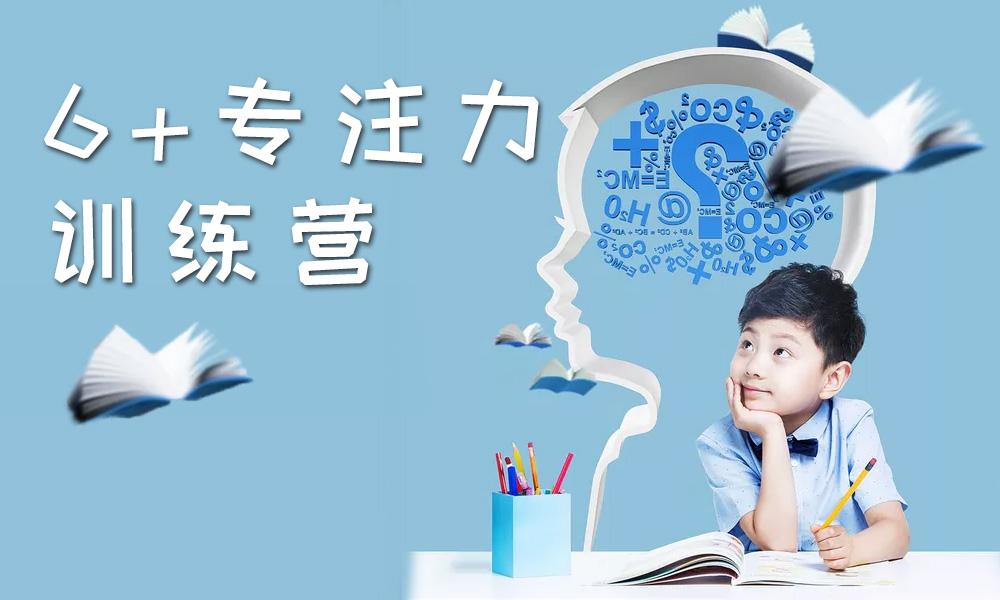 深圳龅牙兔6+专注力训练营