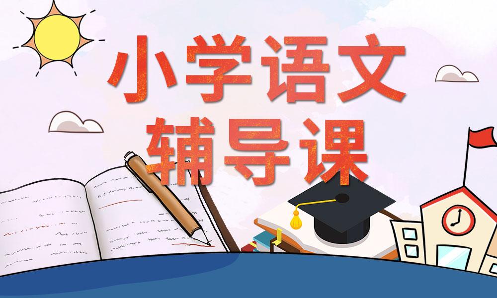 天津文都小学语文辅导课