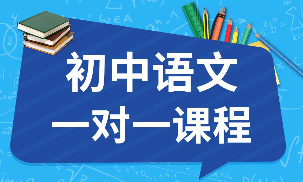 天津优昂初中语文一对一课程
