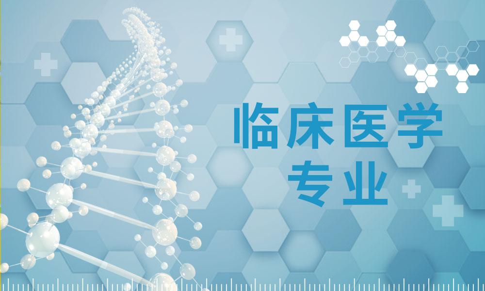 上海海文临床医学专业