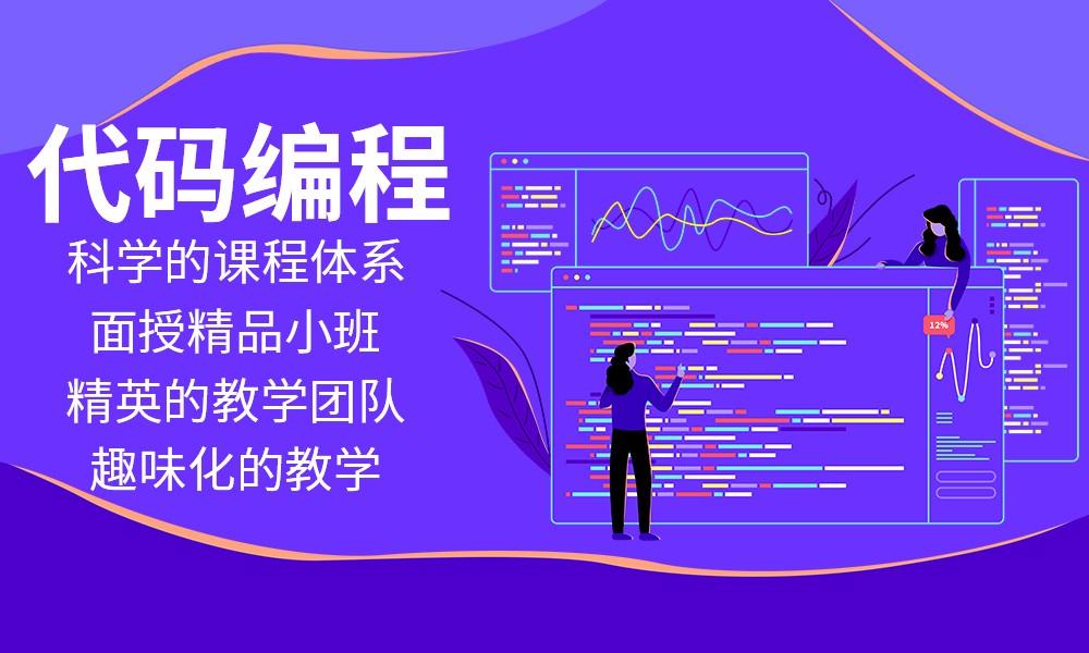 山东可达鸭代码编程课程