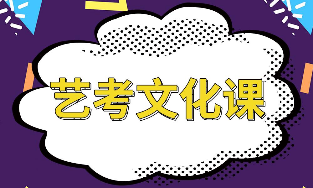 济南天材教育艺考文化课