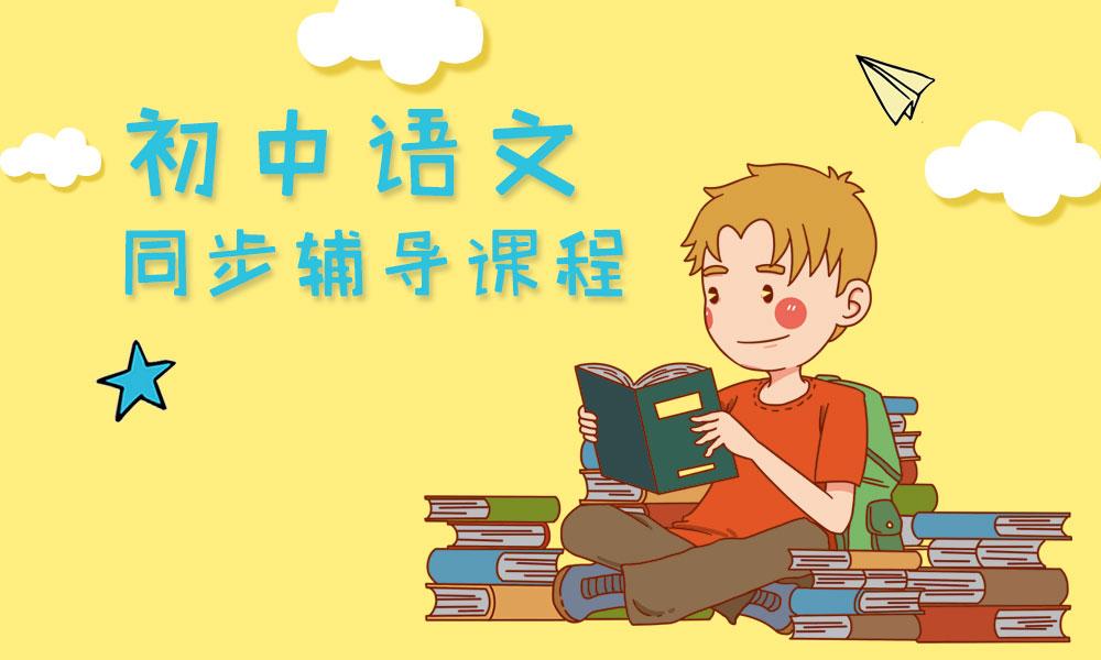 深圳思考乐初中语文辅导课程