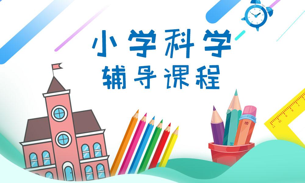 深圳思考乐小学科学辅导课程