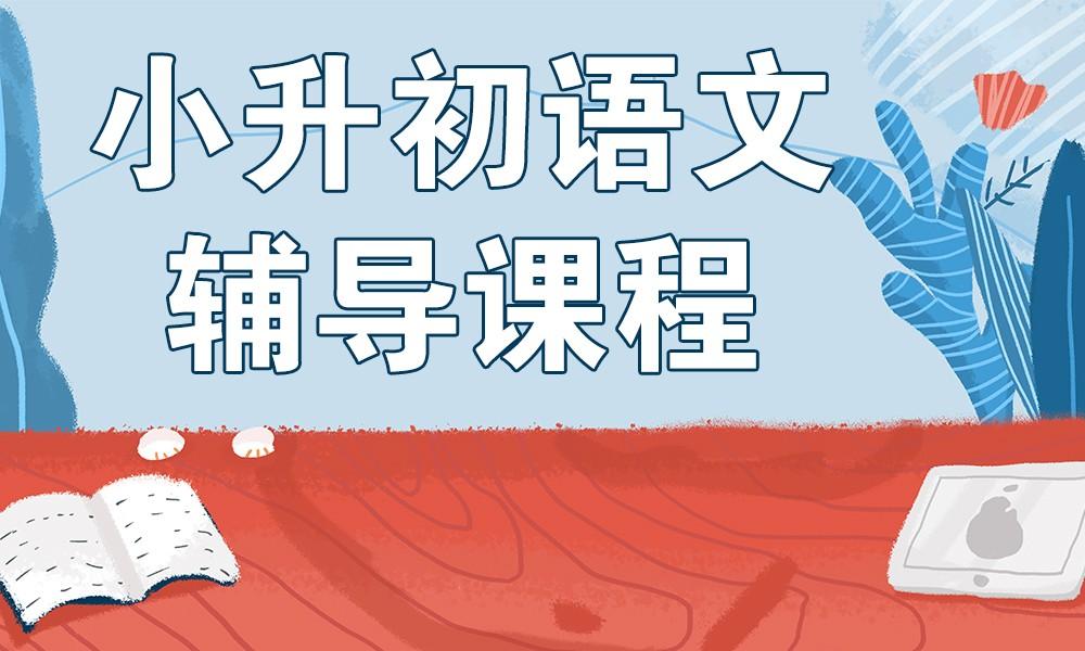 青岛精锐小升初语文辅导课程