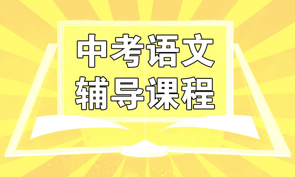 青岛精锐中考语文辅导课程