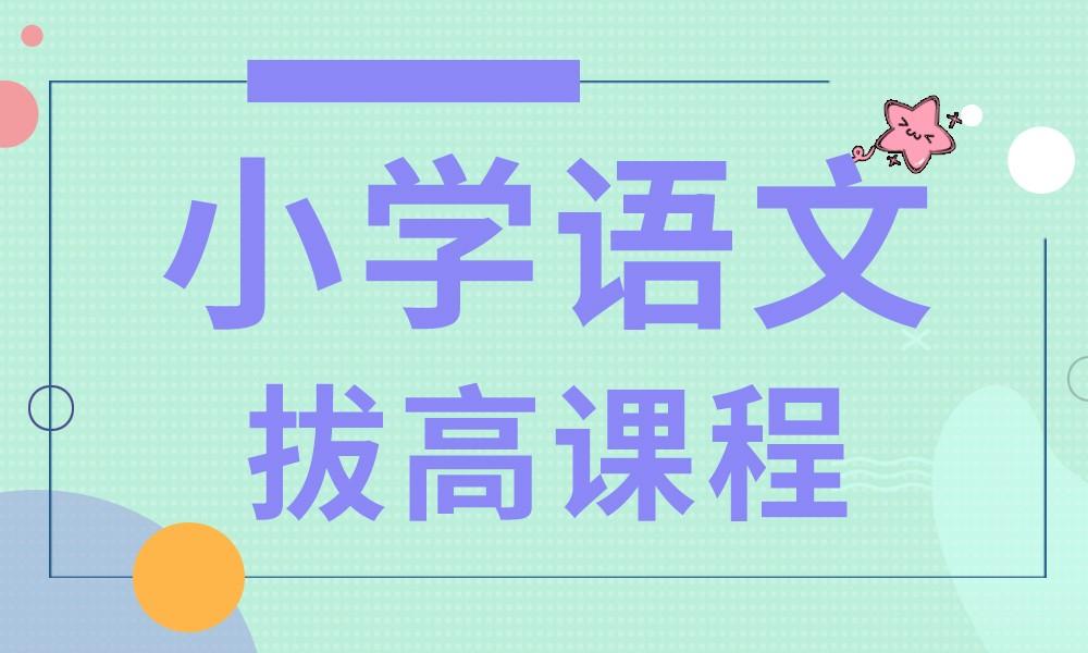 烟台易学汇小学语文拔高课程