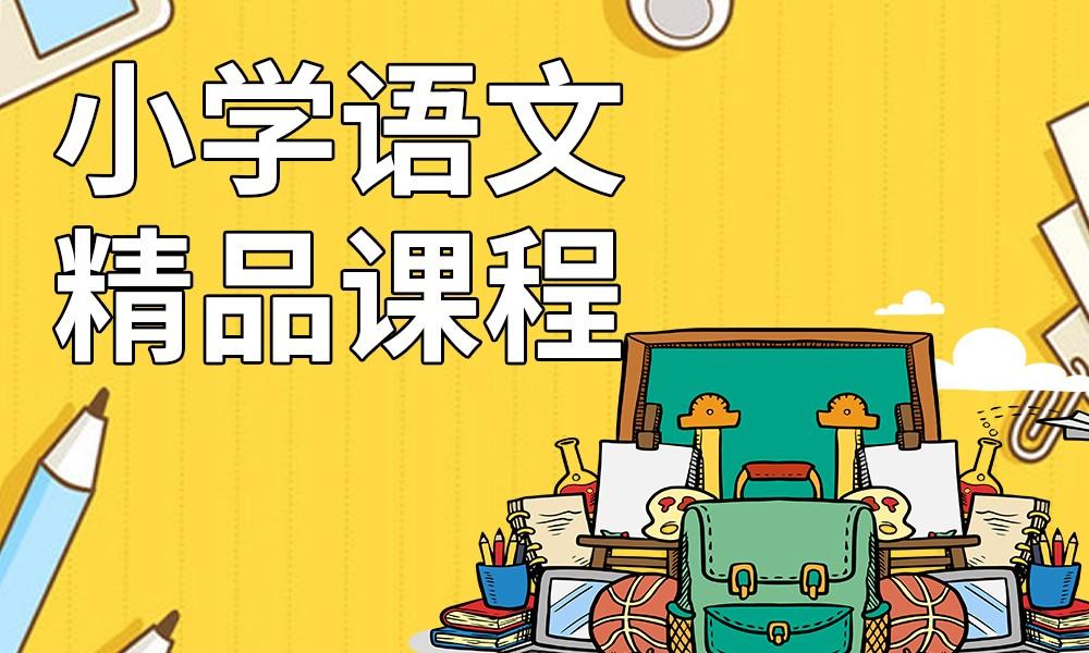 长沙精锐小学语文精品课程